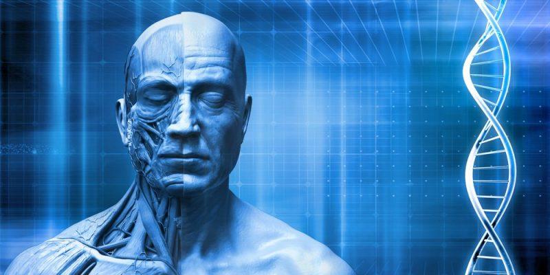 Origen y destino del ser humano (1aparte)